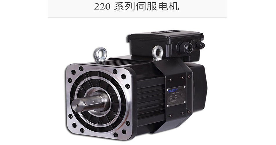 heavy duty servo motors